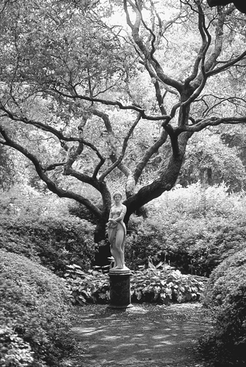 The Virginia Dare statue by Maria Louisa Lander in the Elizabethan Gardens on Roanoke Island. Photograph courtesy of North Carolina Division of Tourism, Film, and Sports Development.
