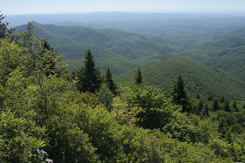 """At 5720 feet overlooking tthe Nantahala National Forest from Devil's Courthouse.""Image courtesy of Janet Tarbox."